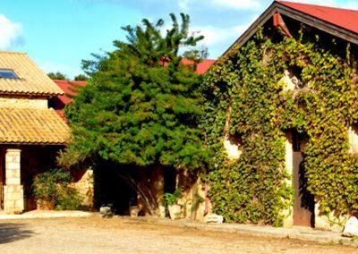 Mercouri Estate Cover