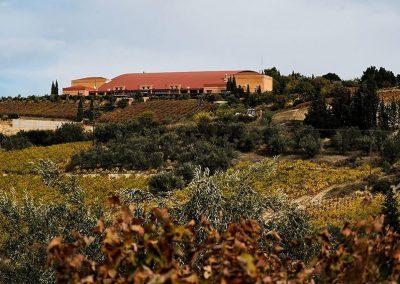 Athenee Importers Semeli Estate 05