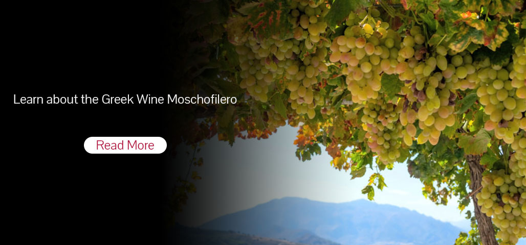 Learn about the Greek Wine Moschofilero