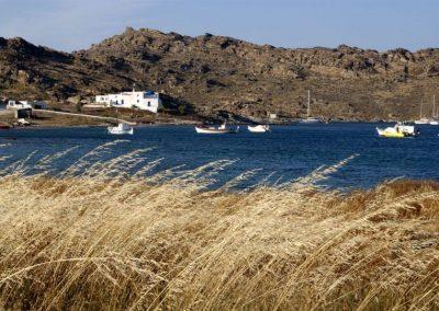 56 Isles Athenee Importers 04